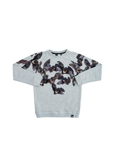 Molo Molo Gri Erkek Bisiklet Yaka Baskılı Çocuk T-Shirt Gri